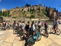 Alquiler bicicleta de paseo 1 día en Benalmádena