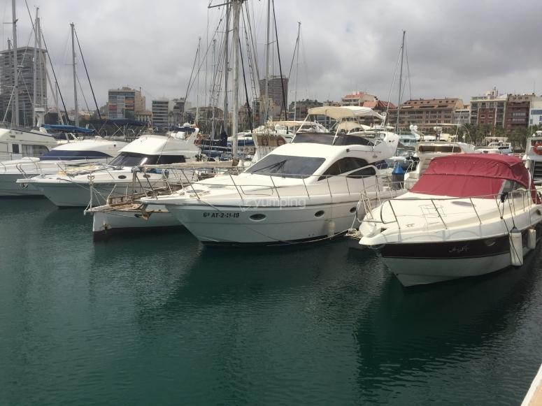 Barco amarrado en puerto de Alicante