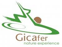 GicaFer Raquetas de Nieve