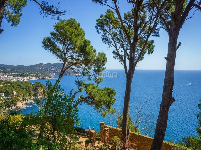 Visit the Calella in Maresme by buggy