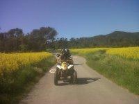 私人四人游Montnegre Natural Park 1小时