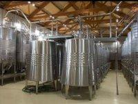Moderno proceso de vinificación