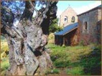Bembibre教堂