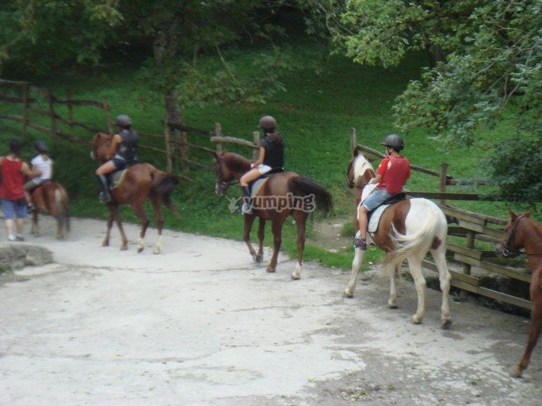 Test con il cavallo