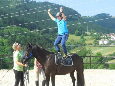 Individual horse riding lesson 1 hour