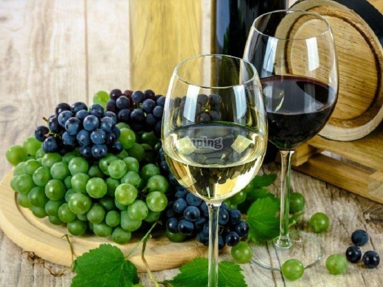 Enjoying the wine in Galicia
