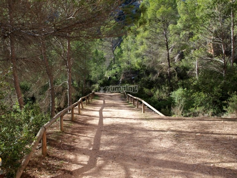 Dirt road in Hoces de Cabriel