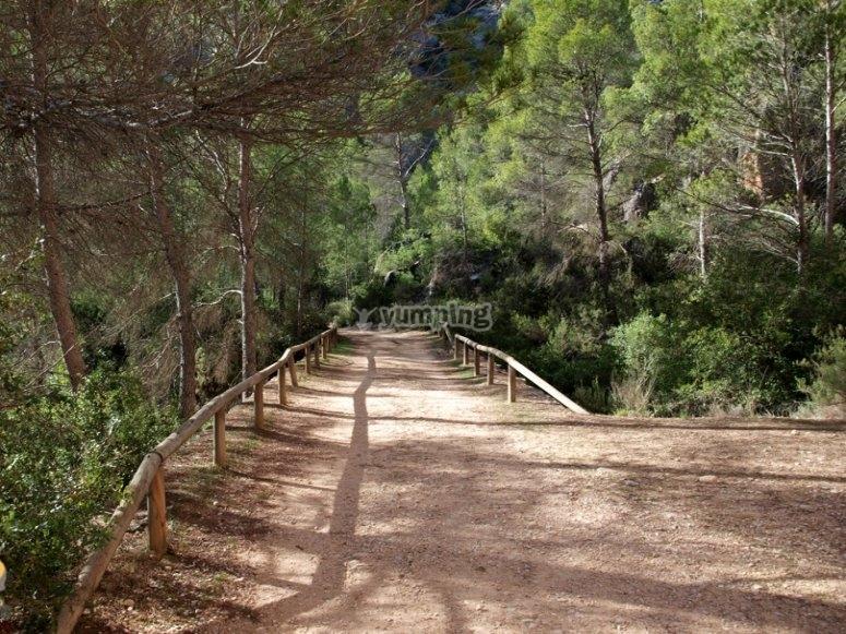Ruta de senderismo Hoces del Cabriel