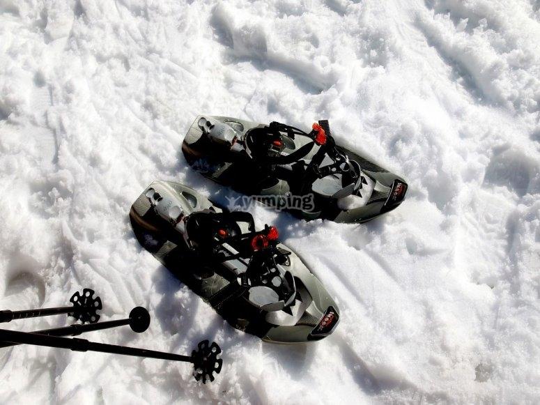 Tour con raquetas de nieve Valle de Sorteny