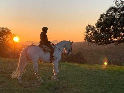 Hípica la Dehesa Clases de Equitación