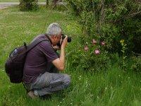 Fotografiando la flora salvaje