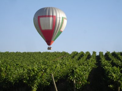Ride on a hot air balloon in Álava's Plains