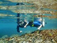 Ruta de snorkel con oceanógrafas l´Ametlla de Mar
