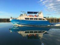 Paseo en barco por el Delta del Ebro de 1h30m