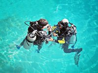 Diving baptism and marine biology course Ametlla