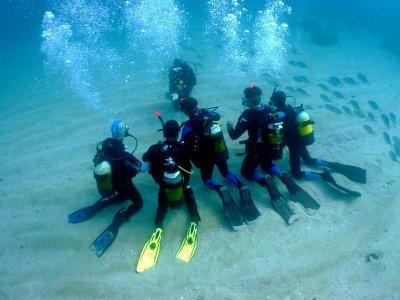 Bautizo de buceo en L'Ametlla de Mar 90 minutos