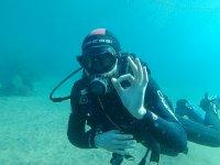 学生在兰萨罗特岛潜水
