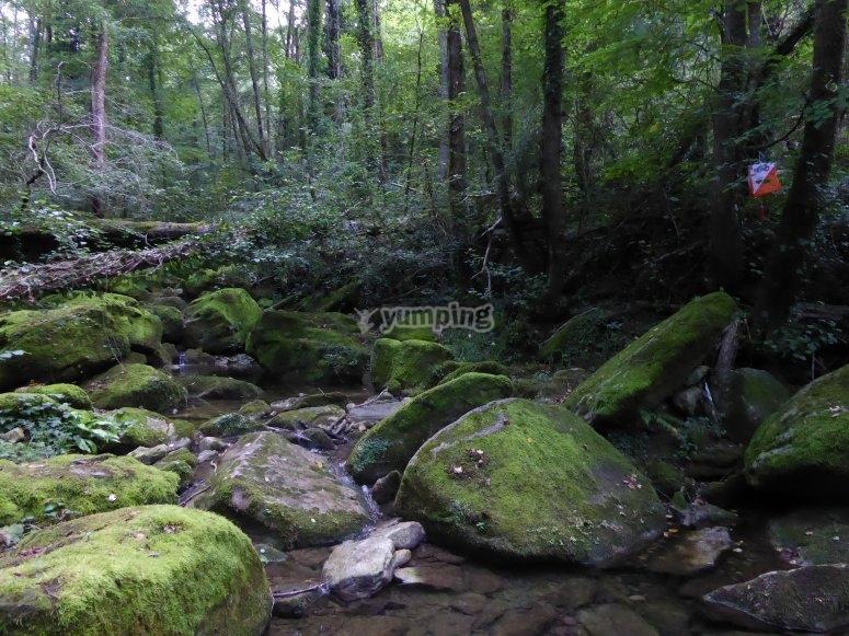 Circuito de orientación por la naturaleza