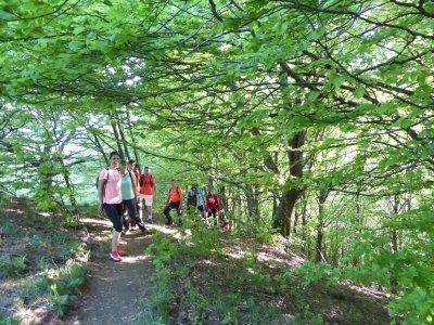 Aziende di escursioni escursionistiche Vall d'en Bas