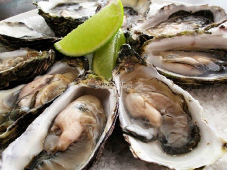 Piatto di ostriche da assaggiare