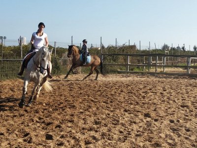 Private horse riding lessons in Cullera 45 min