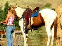 Con un precioso caballo