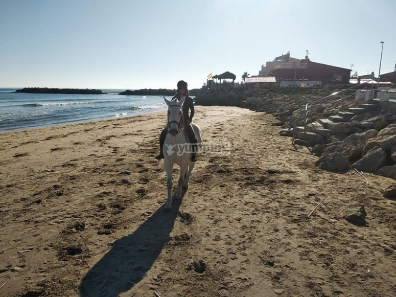Enjoying next to the horse