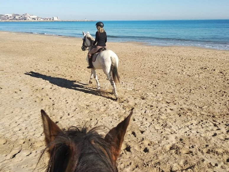 During the horseback ride along the beach