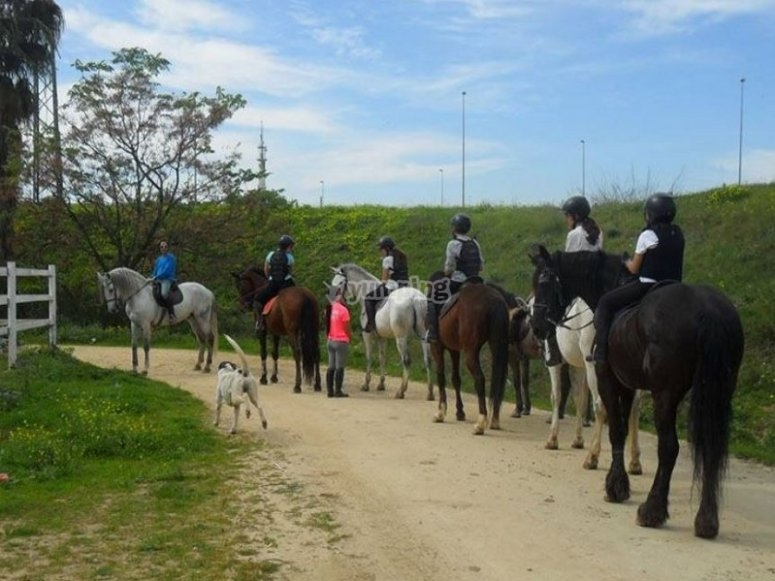 The group ready for the riding class