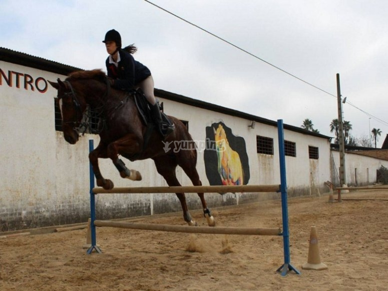 Jumping with the horse