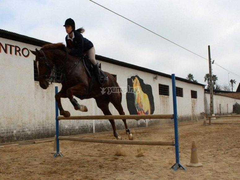 Practicando el salto con el caballo