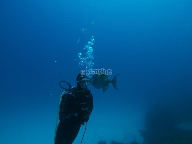 在Formentera潜水课程