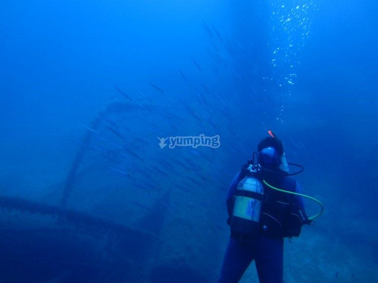 在Platja水域潜水Migjorn