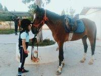 Dando cariño al pony