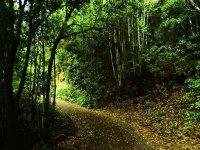 senderismo naturaleza