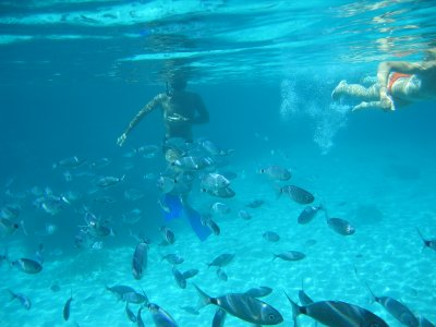 Tour de snorkel desde Platja Migjorn 4 horas