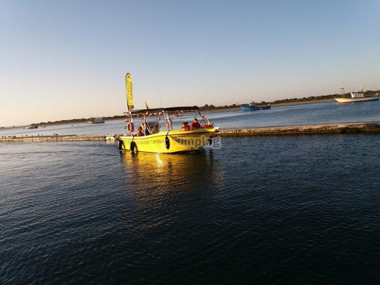 Visitando las marismas del Guadiana