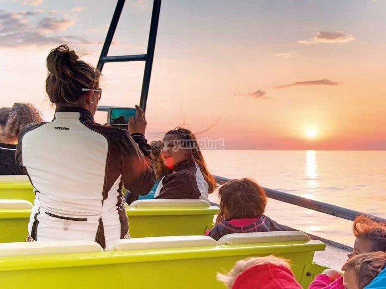 观看阿尔库迪亚港的鲸鱼