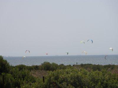 塔里法组一日风筝冲浪课程