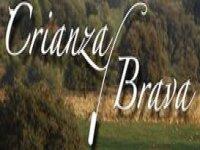 Crianza Brava Team Building