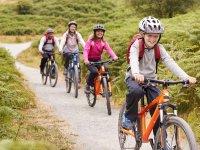 Ruta en bicicleta en familia