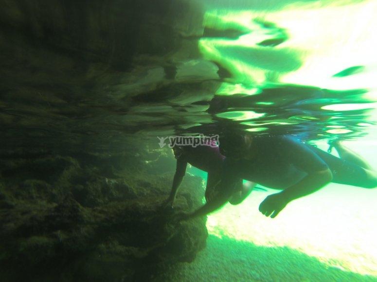 博内尔岛潜水