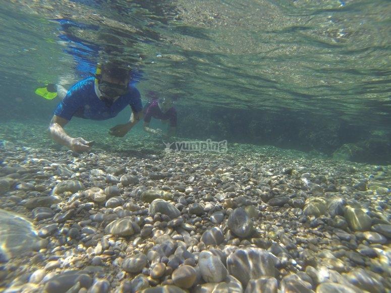 阿库迪亚浮潜
