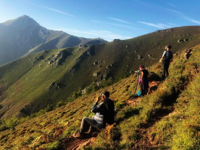 Hiking and sighting brown bear in Aller 4h