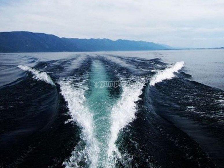 在坎塔布连海的水域