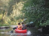 En canoa por el rio sinuoso
