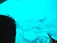 Mirando el fondo marino desde el barco