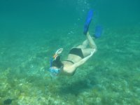 Islote de Benidorm周围的浮潜游览