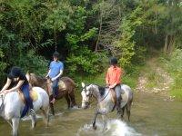 骑马的路线为团队建设