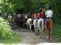 Ruta a caballo con amigos